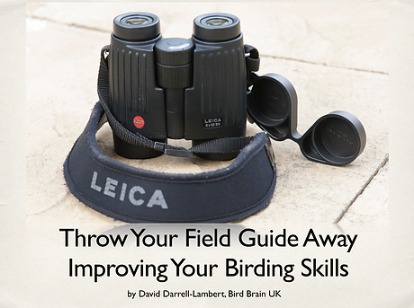 throw away your binoculars