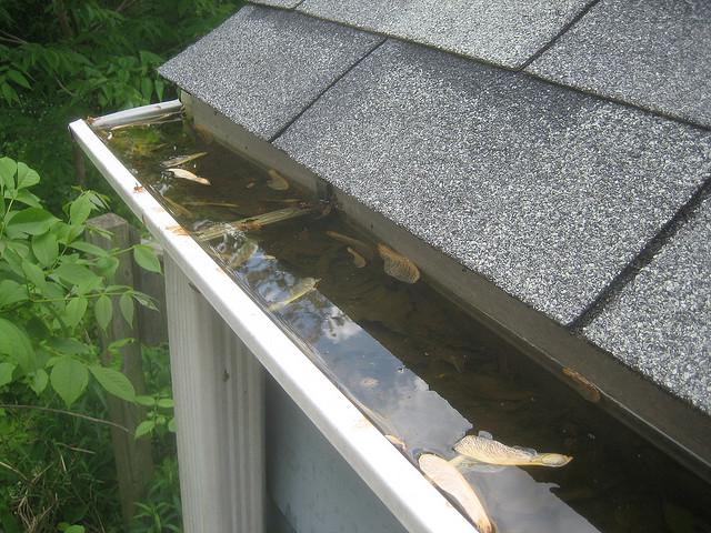 clogged rain gutters