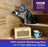 7 DEVON Pippa Quelch.png