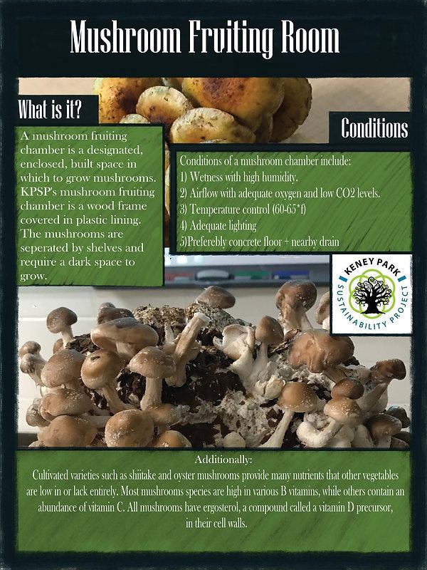 Mushroom Fruiting poster final.jpg