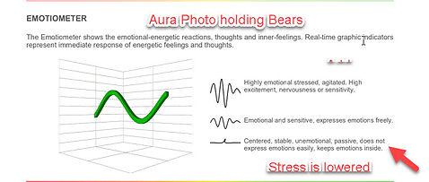 Cecelia's aura photo with bears.jpg