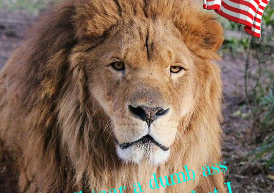 The Lion has spoken