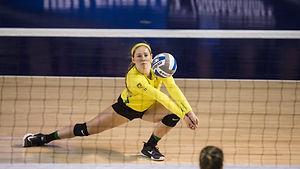 indoor volleyball.JPG