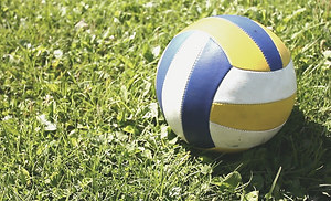 Grass Volleyball_edited.png