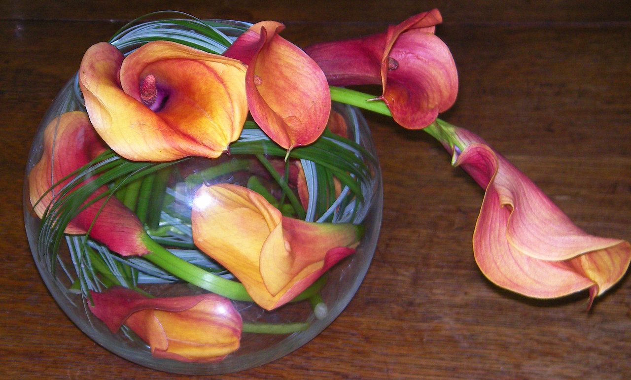 calla lilies in fishbowl