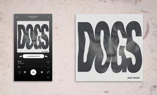 Daisy Brains - Dogs