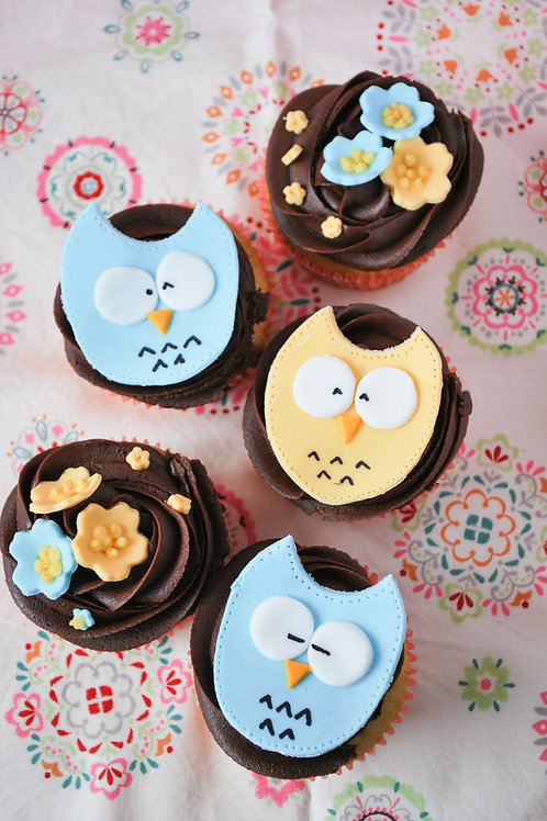 Introduction to Cupcake Decorating