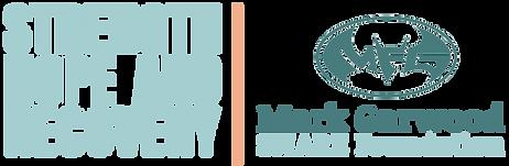 MGSF logo 2020 with batman.png
