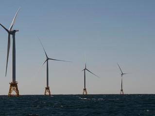 Potential largest offshore wind farm in the world auctioned off for record price