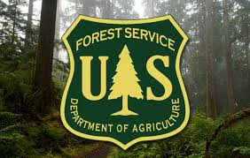 Forest Service seeks comment on work to increase efficiency of National Environmental Policy Act com