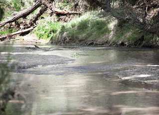 USGS sees problems, successes in ground water management