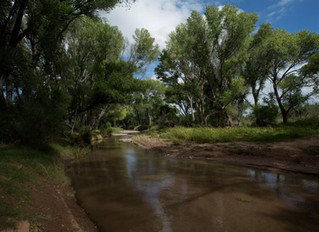 Environmentalists sue feds, trying to force Fort Huachuca cutbacks