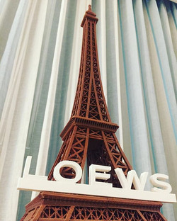 Special 3D printer showcase for Loews Sapphire Hotel  Orlando Florida who are considering implementi