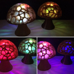 Beautiful 3D printed mushrooms made of coffee & hemp filament! Happy Earth Day 2017!  #allaxis3d #ea