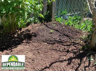 Vegetable Garden Installation