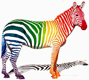 zebra-colorful-stripes-bright-jpg.jpg