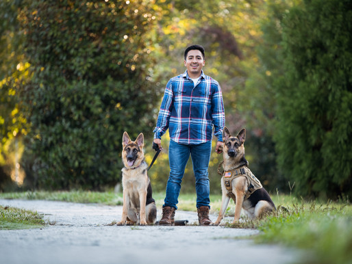 3 Reasons Why You Need Professional Photos of Your Dog