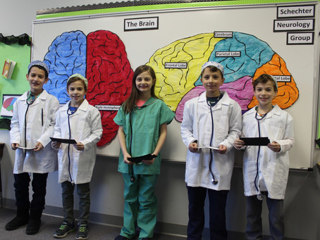Learning about the Brain