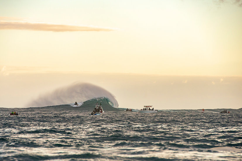 Jaws Line Up