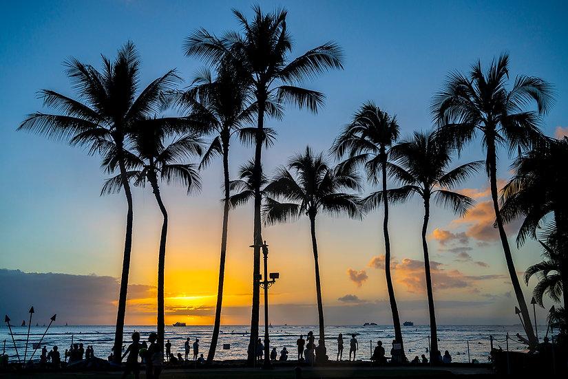Waikiki Walk Way