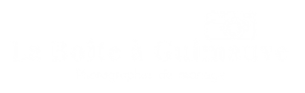 LogoLABG2 WHITE.png
