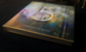 Michelle Eva May_Cheevers Howard_Book.jp