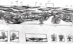 Mural Design (study)