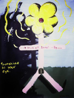 Sunshine in your Eye