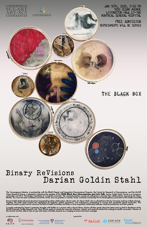 Darian Goldin Stahl - Binary ReVisions.j