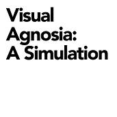 Visual Agnosia.png