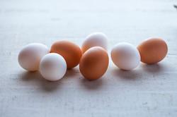 5J78638_The incredible edible egg-1700_r1