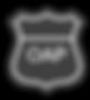 OAP logo.png