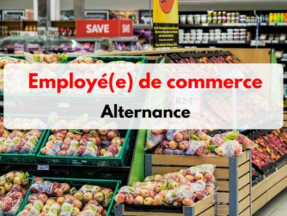 CA- ELS polyvalent(e)s Auchan - St Genis Laval