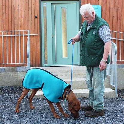 Coppins, Vets, Coppins Vets, Dog, Pets, Thornbury, Vets Thornbury, Veterinary, Veterinary Practice, Falfield, Vets Falfield