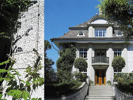 Пример озеленения фасада, Вилла, Цюрих