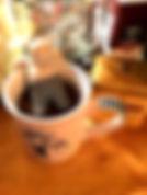 Tea Fred the Infuser IMG_0973_edited.jpg