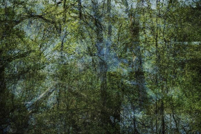 percep 120x80.jpg