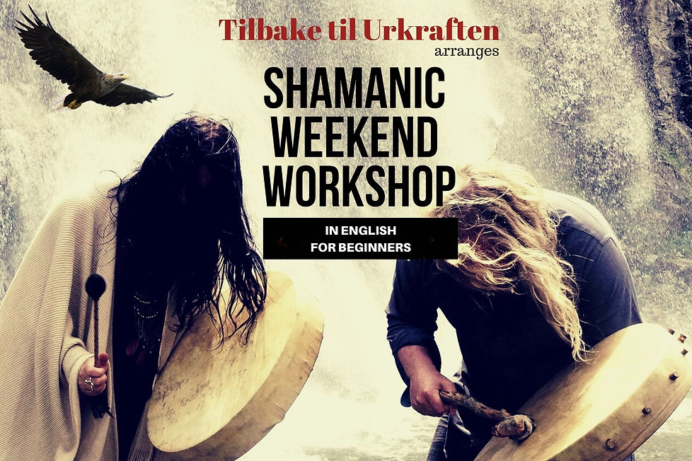 Shamanic weekend workshop inNorway