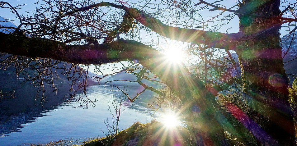 Sjamanisme I Ekstrahering I Kurs