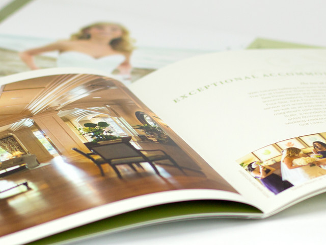 Digital and Print Collateral
