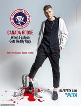 Rafferty Law for PETA
