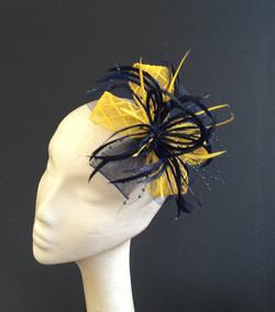 Navy & Yellow Crin