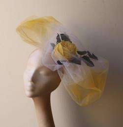 Laura Yellow Rose