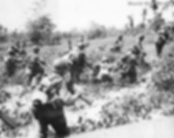 troops_advance_through_Swamp_on_Leyte_ed
