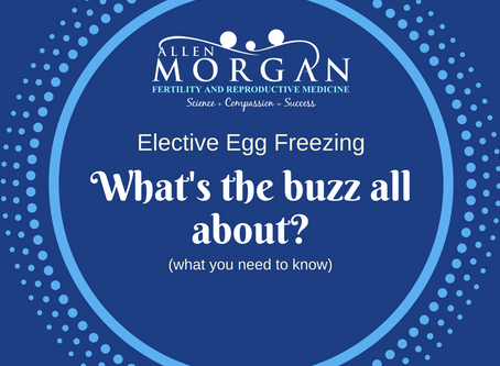 Elective Egg Freezing | What's the Buzz About?