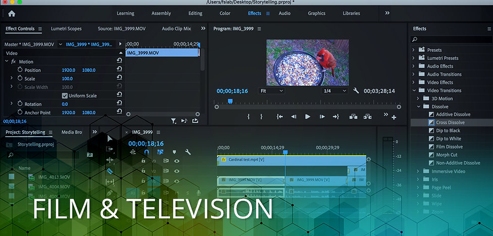 VIDEO_PRODUCTION_VIRTUAL1.jpg