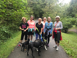 Walkers on the Huckleberry Trail