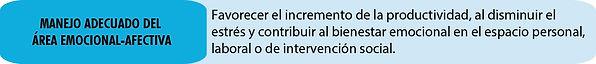 Informe 2020s-32.jpg