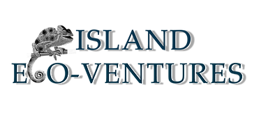 ISLAND ECOV PNG for WEB.png