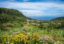 bigstock-Green-Coastline-Of-Flores-Isla-